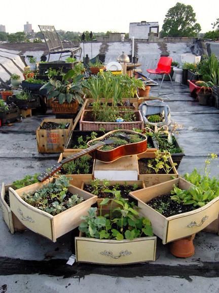 rooftop-garden1