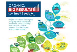 Trends: Organic Goes Mainstream