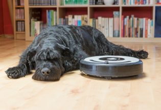 Cleaning Up: How Robot Vacuums Work and What's Next
